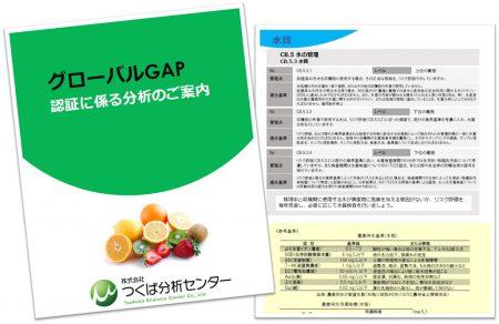 GGAP分析ガイドブック資料請求