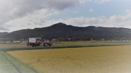 農作業安全研修ツール